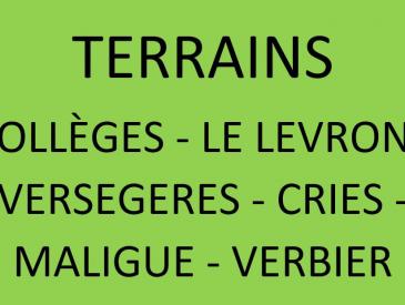 LE LEVRON - BAGNES - VOLLÈGES